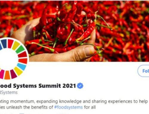 المشاركة في الاجتماع الافتتاحي الافتراضي لمجموعة الأصدقاء المعنية بقمة النظم الغذائية 2021